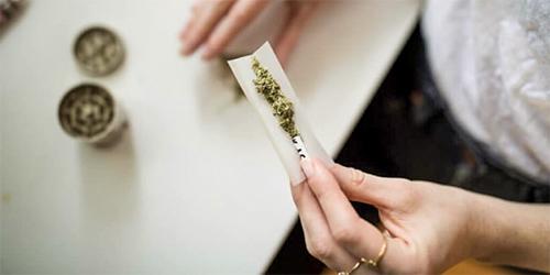 Ce qu'il faut savoir sur l'utilisation thérapeutique du cannabis